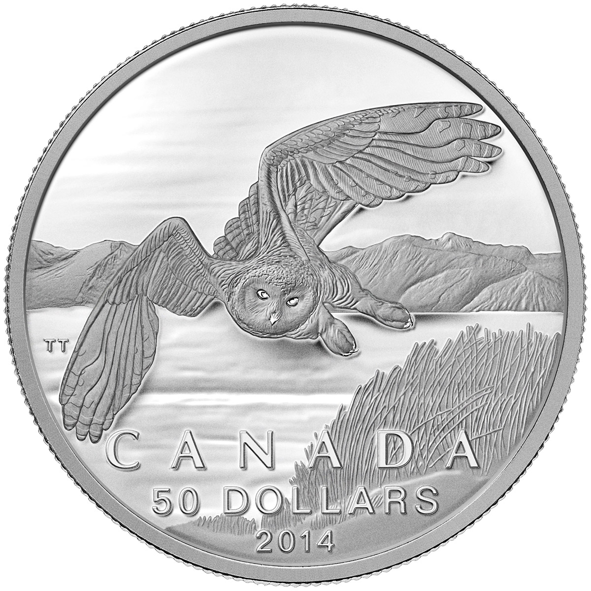 CANADA 2014 $50 Fine Silver Commemorative Coin - Snowy Owl - $50 for $50 - #2 In Series